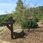 Durango Colorado Ranch design and landscape installation by David Hart of Gardenhart