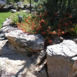 Boulder Retaining wall and planting area for Colorado Blue Spruce, Austrian Pine, perennials and shrubs in Durango Co.