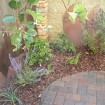 Small Townhome Patio with Pavers, espalier and perennials in Durango Colorado Landscaping by Gardenhart Landscape & Design