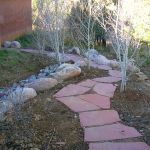 Informal Flagstone Walkway through Aspen Grove and Drainage Swale in Durango Colorado by Gardenhart Landscape & Design