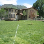 Installing Sod Trees, Shrubs Retaining Wall in Landscaping Durango Colorado