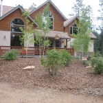 Creating Planting Area with Aspens and xeric, native shrubs and perennials in Durango Colorado by Gardenhart