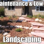 durango landscaping low water low maintenance by gardenhart landscape & design